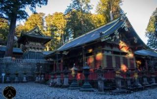 Nhật Bản – Tour Đặc biệt AiTravel